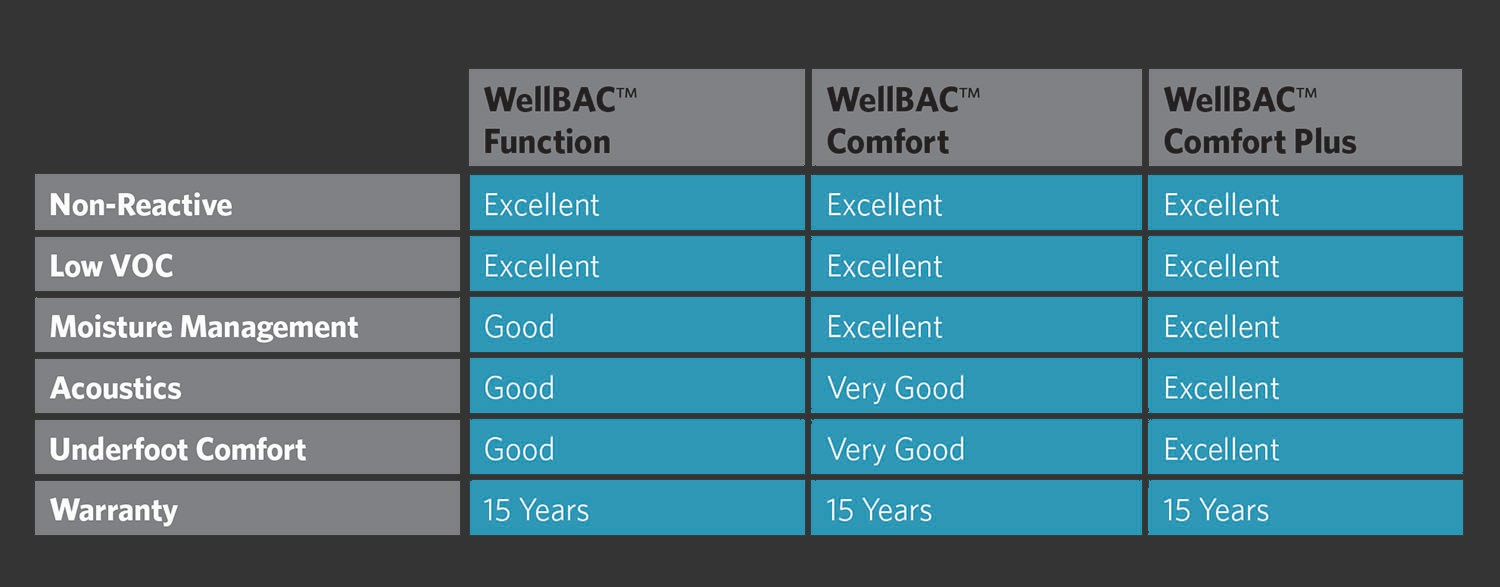 Wellbac Features and benefits table-gray